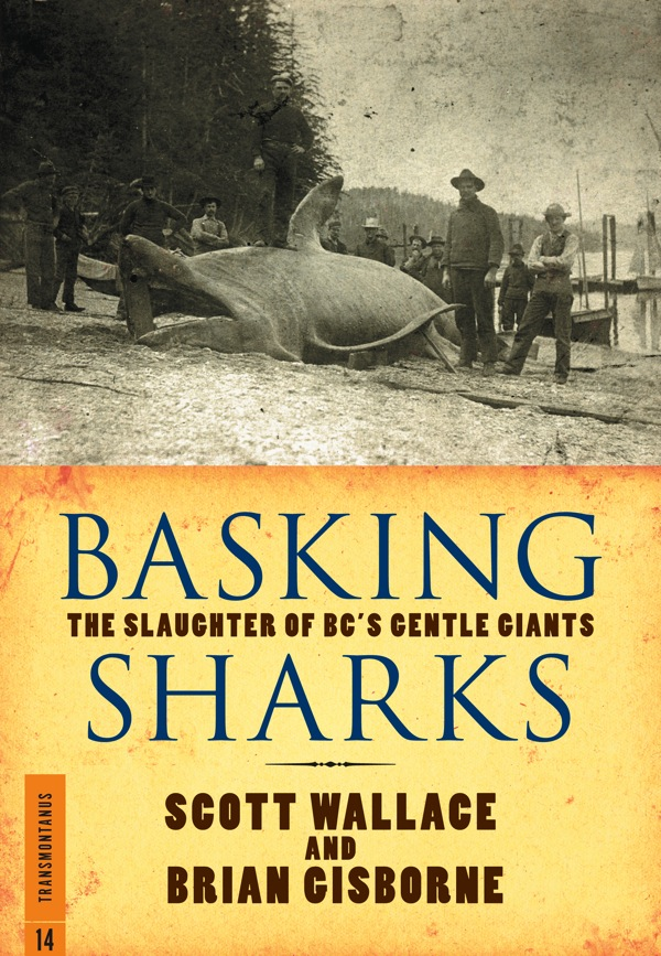 Basking Sharks by Scott Wallace, Brian Gisborne