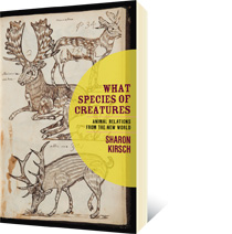 What Species of Creatures by Sharon Kirsch